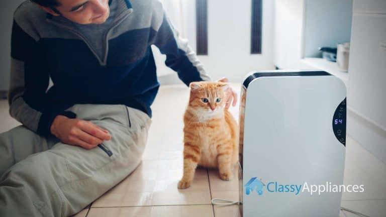 Dehumidifier Cat And Man