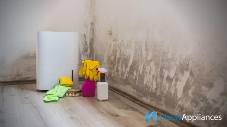 Dehumidifier Mold Problem