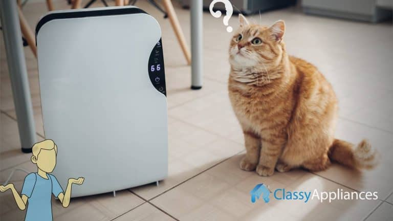 air purifier or dehumidifier which one you need?